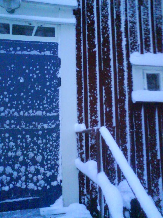I snöstormens spår, november 2008