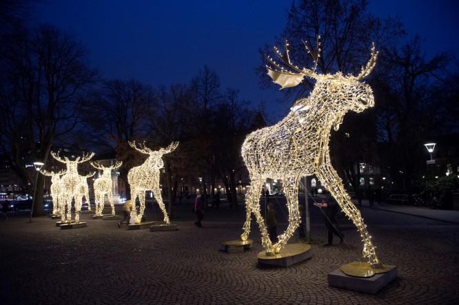 Stockholms stads älgparad