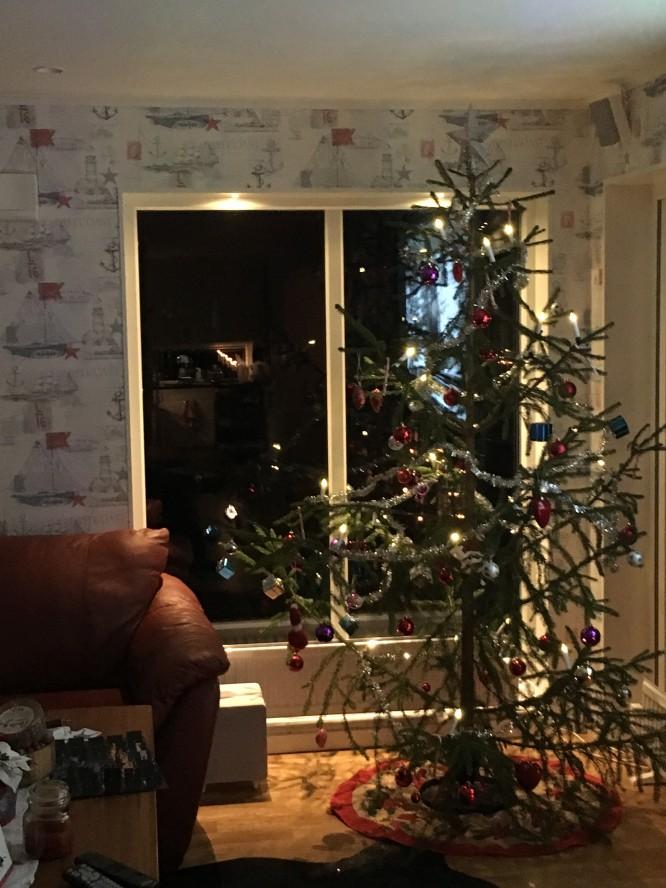 Det blev en julgran, från en granntomt där man mycket lägligt skotade av precis innan jul.