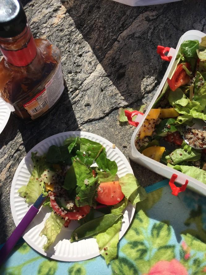 Picknick på solvarma hällar