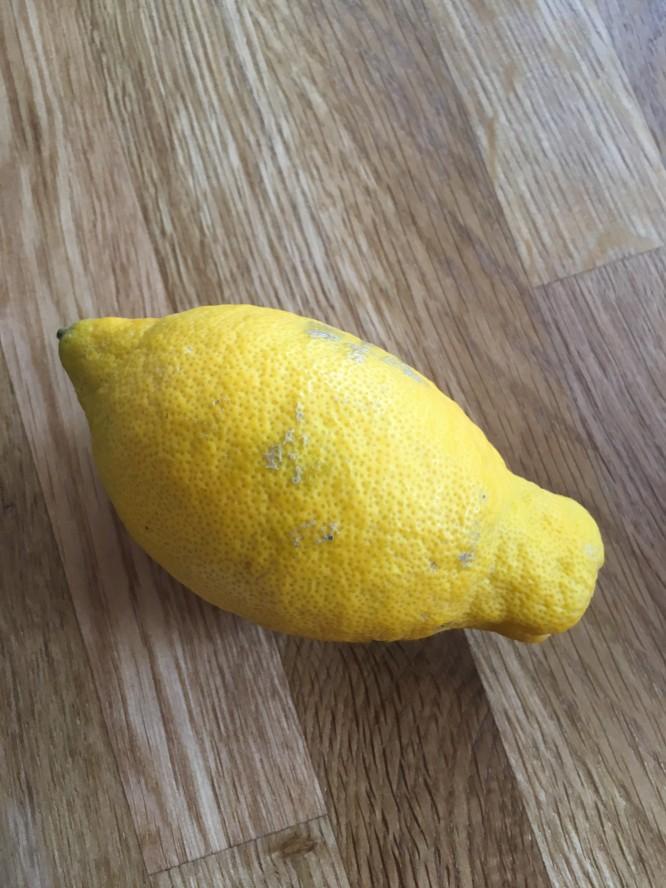 Solmogen egenodlad citron.