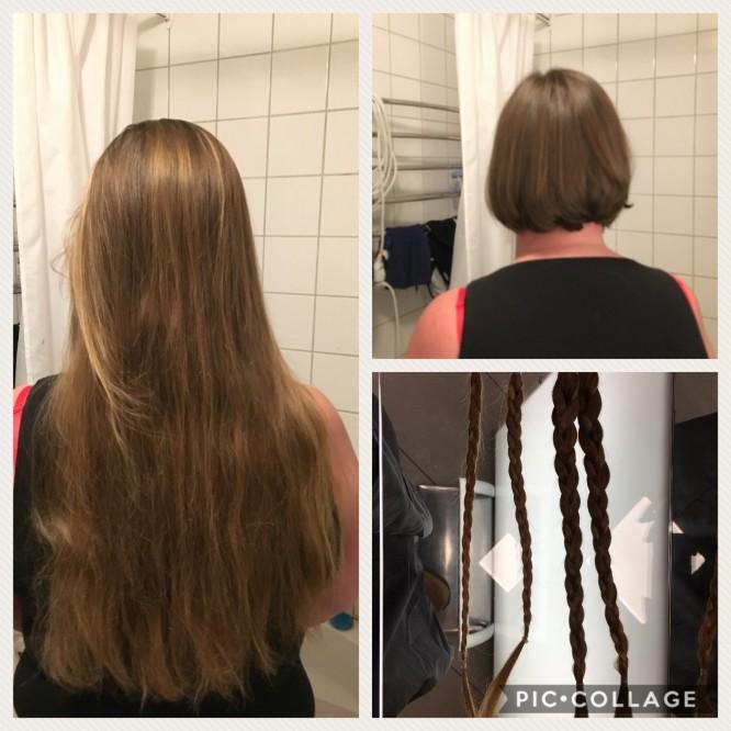 Före och efter hårdonationen.