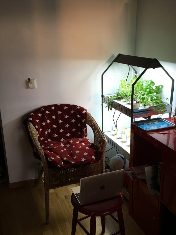 En skön korgstol från IKEAs fyndhörna med en kudde och min favoritfilt från Gripsholms.